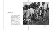 Buch_104-105